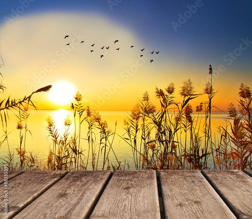 Photo Stands Melon atardecer en el lago