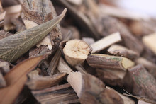 Mamajuana Roots, Macro