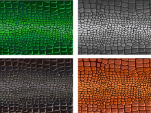 Reptile Skin. Background. Text...