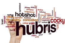 Hubris Word Cloud