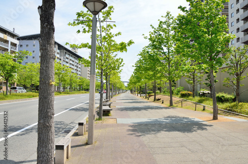 新緑の歩道と高層マンション