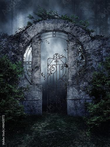 Papel de parede Ogrodowa brama z bluszczem nocą