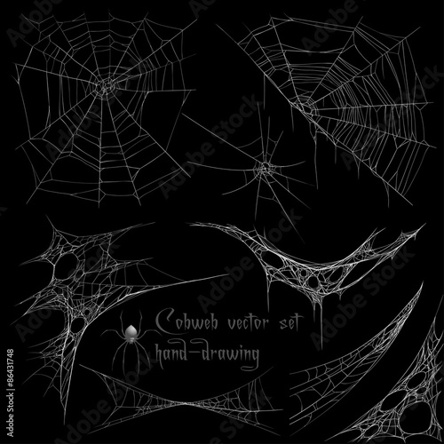 Fotografiet Hand drawing cobweb set