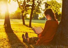 Girl Reading Book At Park In Summer Sunset Light