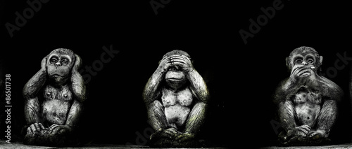 Foto op Canvas Aap Theory three wise monkeys /Monkey close ears monkey close mouth and Monkey close eyes .