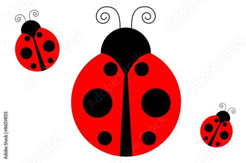 Canvas-taulu ladybug
