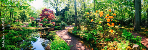 Poster Jardin nature background panorama