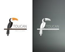 Vector Toucan Logo Design Template. Artistic Bird Silhouette. Creative Concept Logotype For Your Company.