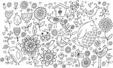Doodle Flowers And Birds Vector Set