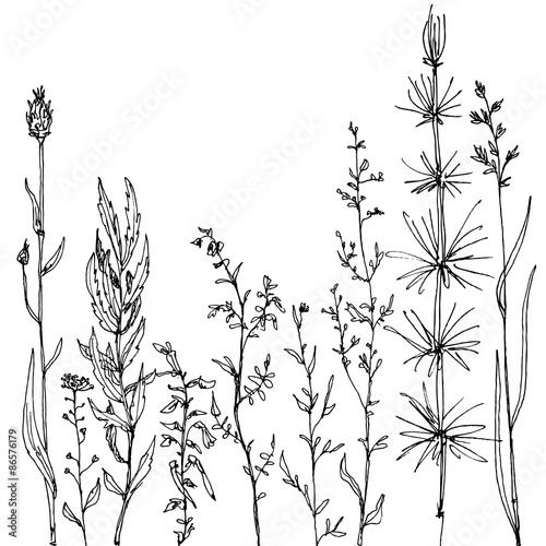 Foto  floral composition