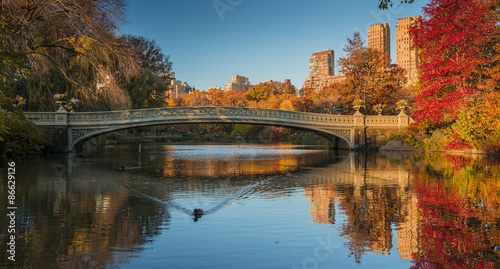 фотография  Fall colors in Central Park, New York City