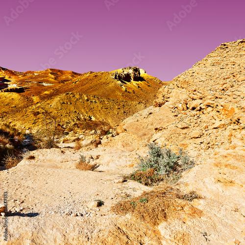 Fotobehang Zwavel geel Desert at Sunset