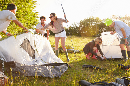 Fotografie, Obraz  Group Of Young Friends Pitching Tents On Camping Holiday