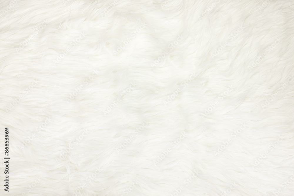Fototapeta Close up at white fur fabric texture background