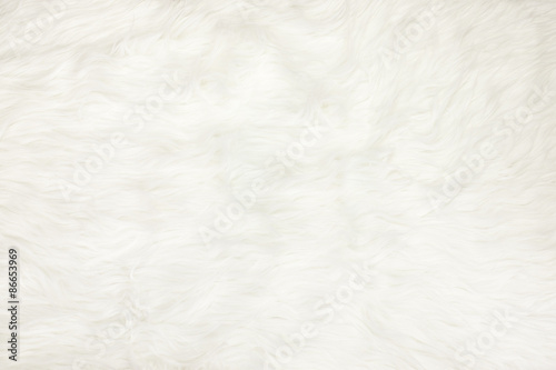 Close up at white fur fabric texture background Fototapeta