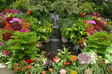 Obraz na SzkleColorful tropical garden