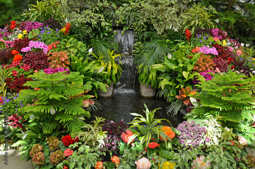Papiers peints Jardin Colorful tropical garden