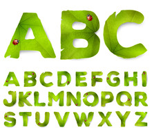 Vector Alphabet Letters Made F...