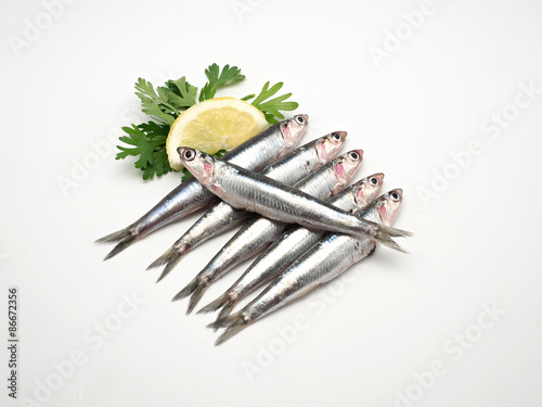 Photo Fresh and raw mediterranean anchovy on white background