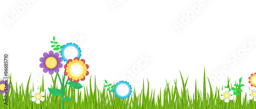 Spring Grass with Flowers