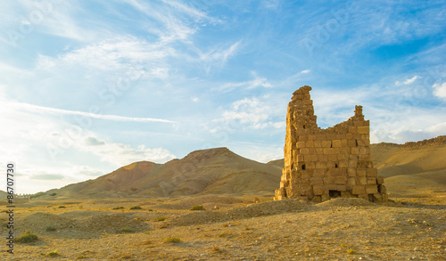 Poster Algérie Ruins in the desert of Syria.