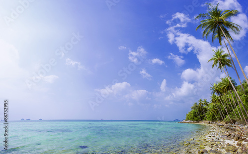 Foto op Canvas Strand Palm tree with sunny day. Koh Samui. Taling Ngam Beach