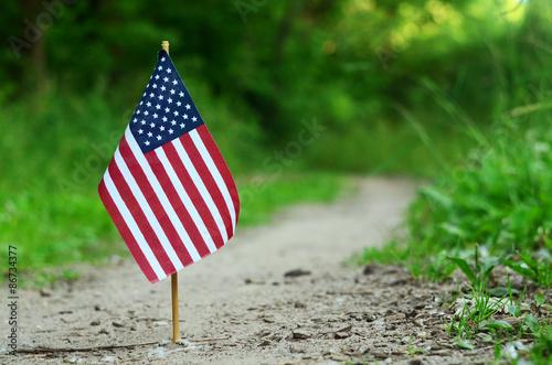 American flag © Giddrid