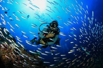 Ronjenje na tropskom koraljnom grebenu s ribom pod vodom