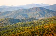 Autumn View At Blue Ridge Moun...