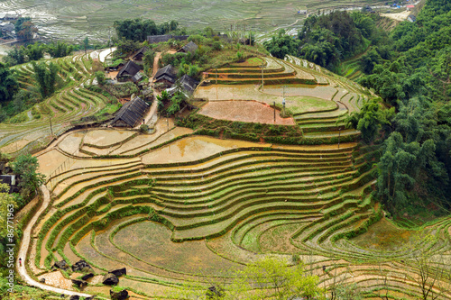 Fotobehang Rijstvelden village agriculture Terraced Rice Field hill