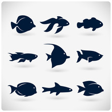 Flat Fish Silhouette Icons