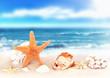 seashells on seashore in tropical beach - summer holiday background