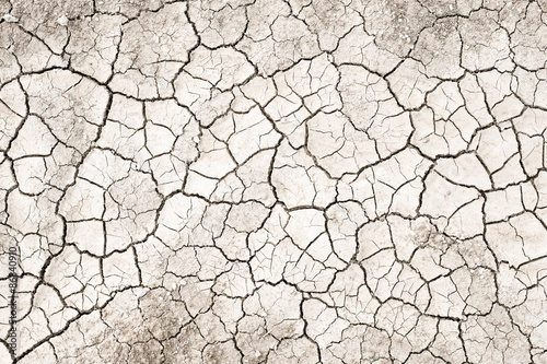 Fotografie, Obraz  Dried land with no water