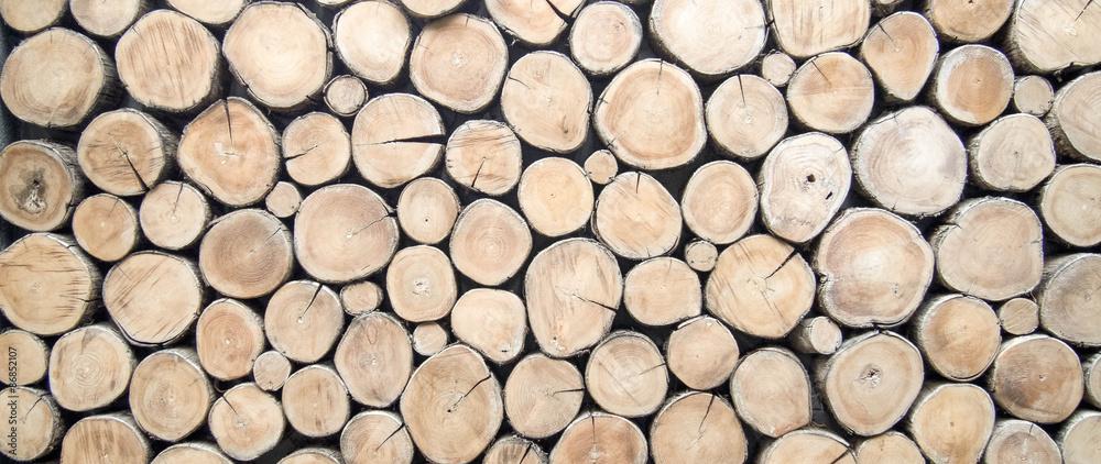 Fototapeta wallpaper wood log