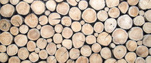 Wallpaper Wood Log