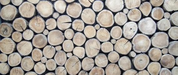 Fototapetawallpaper wood log