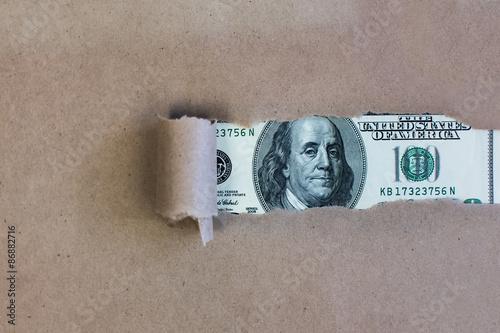 Fotografía  Dollars through torn green paper