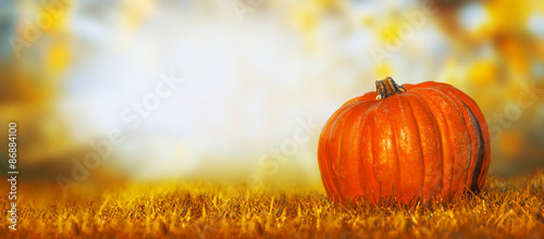 Photo  Pumpkin on lawn over autumn nature background, banner