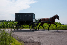 Amish Horse And Buggy. An Amis...