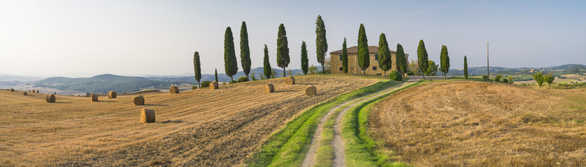Fototapetaroad to the farm in Tuscany in Italy