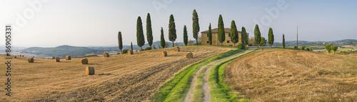 Foto op Plexiglas Toscane road to the farm in Tuscany in Italy