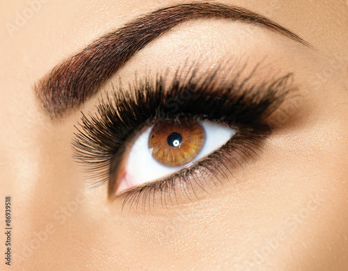 Poster - Brown eye makeup. Perfect beauty eyebrows