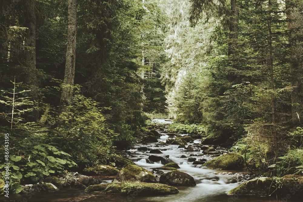 Fototapeta Creek