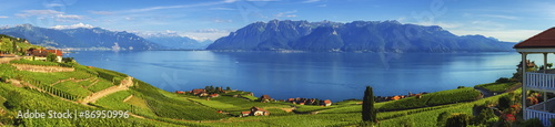 Photo sur Toile Vignoble Panorama on Lavaux region, Vaud, Switzerland