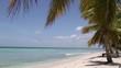 natürlicher Strand mit Palmen in der dominikanischen Republik