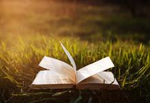 Open Book On Grass Under The Sun