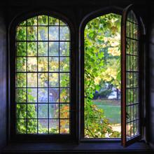 University Windows
