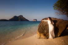 Bride Leans On Large Rock At Beach