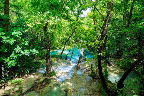 Spoed Foto op Canvas Groene idyllic scenario with a mountain river in the forest