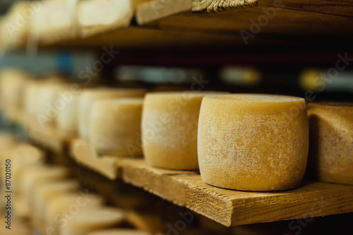 Photo sur Toile Produit laitier wheels of cheese in a maturing storehouse dairy cellar